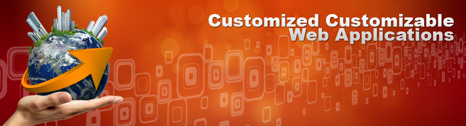 Custom Web Development India